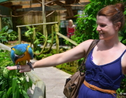 BIRDWORLD-KURANDA