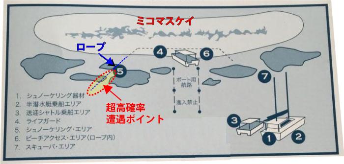 ミコマスケイのウミガメ遭遇ポイント